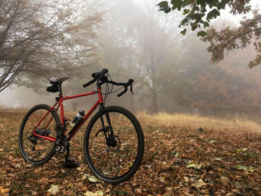 Gravel bike on a leafy floor in a forest