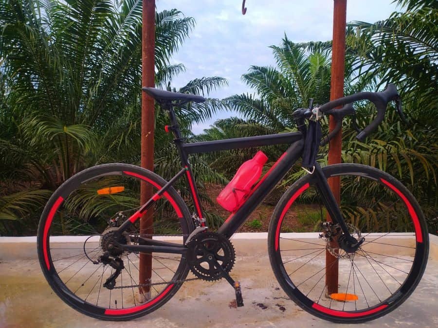 Red and black gravel bike with palm trees in background