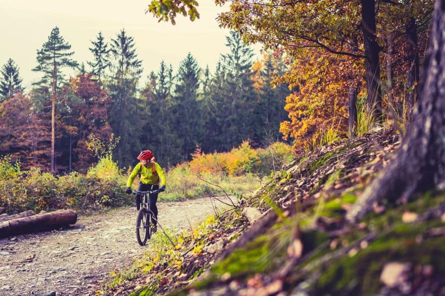 Cyclist on mountain bike in fall going through forest