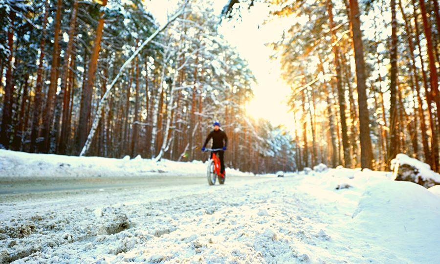 Man cycling a fat bike through snowy road in a forest